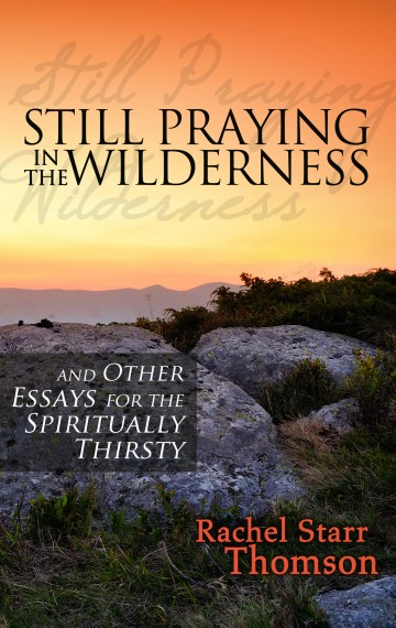 Still Praying in the Wilderness: And Other Essays for the Spiritually Thirsty